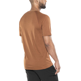 Smartwool Merino 150 Baselayer Pattern - Sous-vêtement Homme - marron